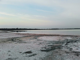 some of the salt on the shores of the salt lake