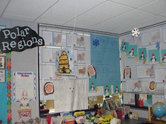 Open house ideas polar habitat