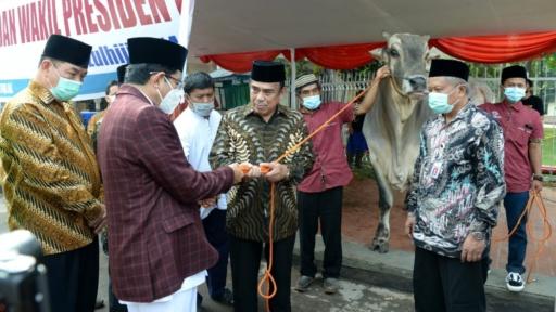 Ini Hewan Kurban Presiden Jokowi Yang Diserahkan  ke Pihak Masjid Istiqlal