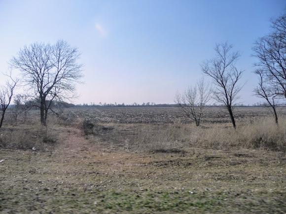 Дніпропетровська область, Царичанський район. Незоране поле