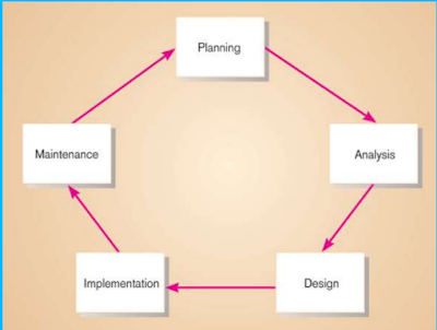 Developing Information Systems and System Development Life Cycle (SDLC)