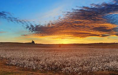 Αποτέλεσμα εικόνας για ηλιοβασίλεμα χωράφι