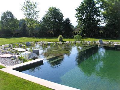 Piscina donde se filtra el agua de manera natural