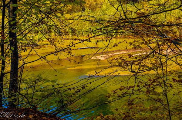 язовир-Душанци-Dushantsi-lake
