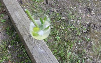 Lovage Gin Spritz (Liebstöckel-Gin-Spritzer)