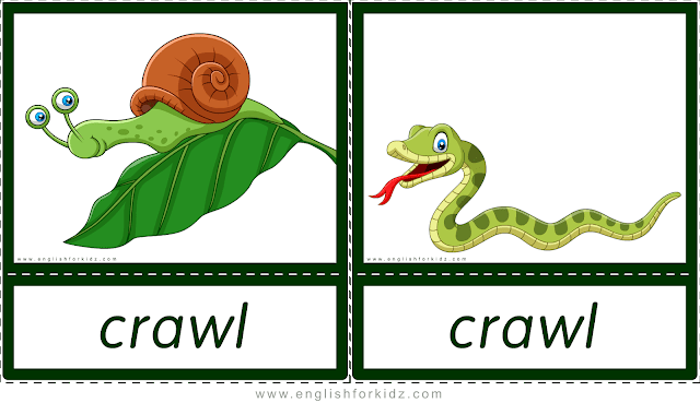 Crawl (snail, snake) - printable animal actions flashcards for English learners