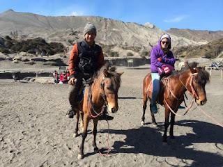Harga Sewa Kuda di Gunung Bromo, Paket Wisata Bromo Murah, Bromo Tour