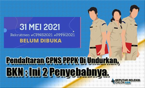 Pendaftaran CPNS PPPK Di Undurkan,  BKN : Ini 2 Penyebabnya.