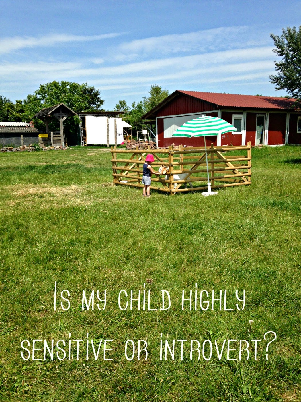 Highly sensitive child or introvert?