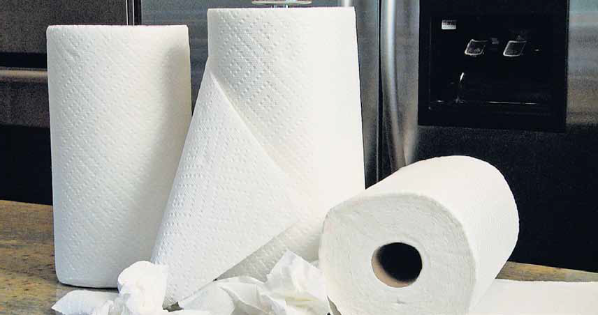 Weird Jobs: Paper Towel Sniffer: Paper towel earns you?