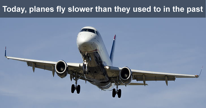 9 Amazing Facts For People Who Like Amazing Facts