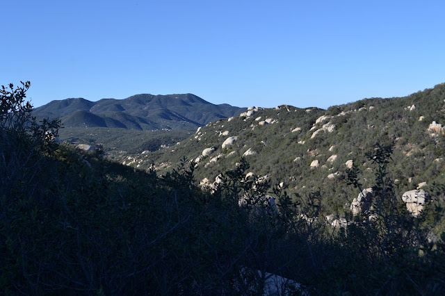 bushes and brush and shallow canyon and mountains across the hills