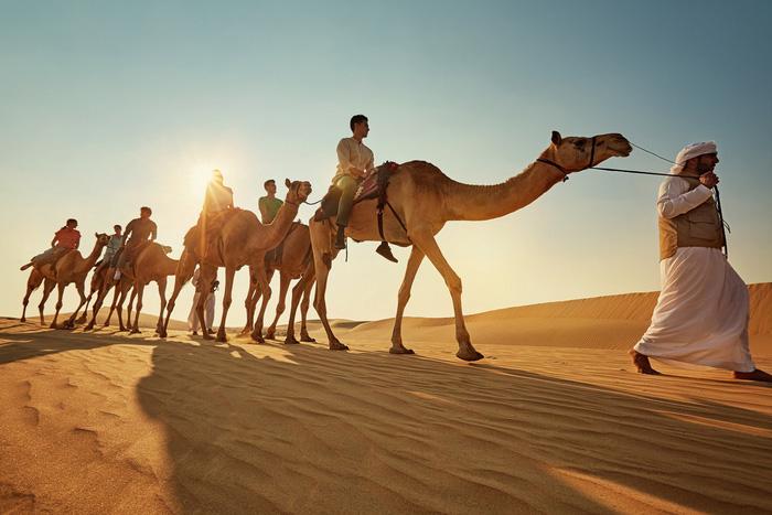 Những điều kỳ thú ở Abu Dhabi -6