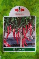 cabe baja,cap panah merah,cabe merah,benih cabe,petani,lmga agro