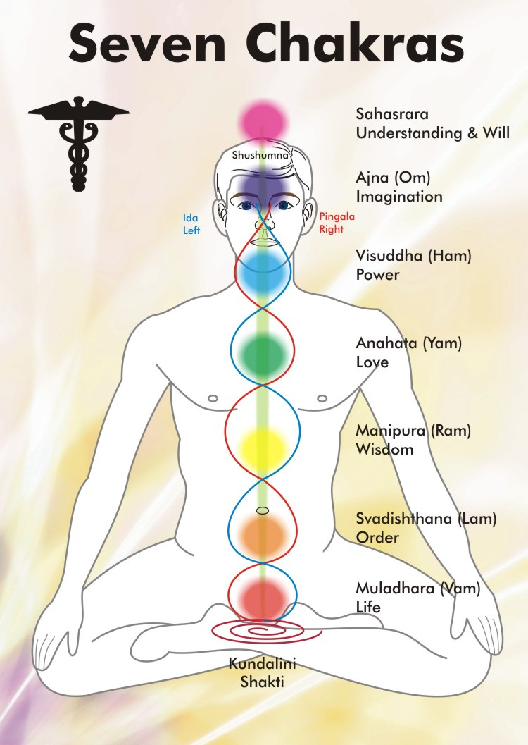 look at the chakra diagram below get familiar with where the energy centers are located with each one close your eyes and visualize where they are in  [ 750 x 1057 Pixel ]