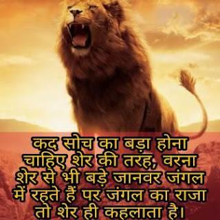 LION STATUS SHAYARI HINDI