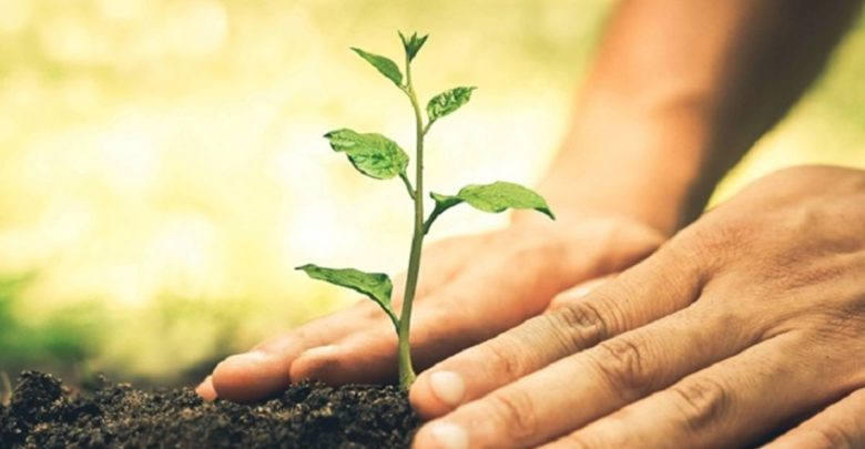 Ενημερωτική Εκδήλωση με θέμα: «Νέος Κανονισμός για τη Φυτοϋγεία»