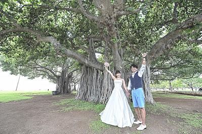 Honolulu Park Wedding