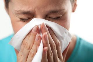 10 remedios caseros para la rinitis alergica