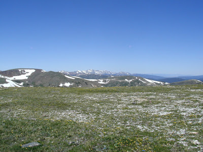 Photo of  the Tundra with mountain peaks behind it.  Rocky Mountain N.P.