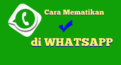 cara-mudah-mematikan-centang-biru-whatsapp