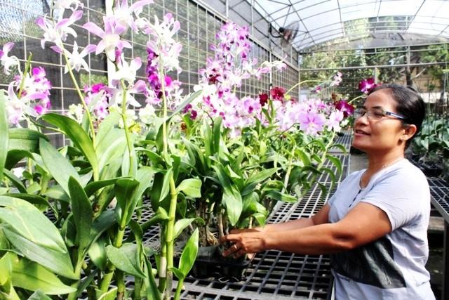 urban outbound agrowisata dan ekowisata