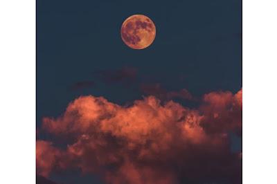 قراءة رواية منازل القمر كاملة للكاتبة برد المشاعر