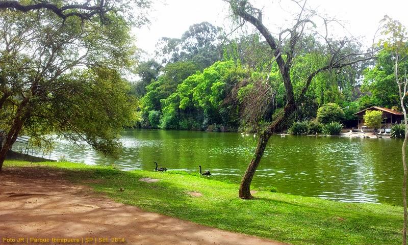 Lago no Parque Ibirapuera | SP