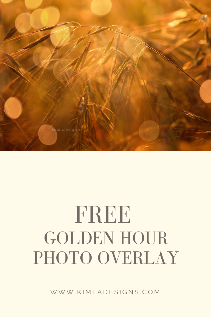 Flare - Top 9 Photography Freebies You Should Try this Summer