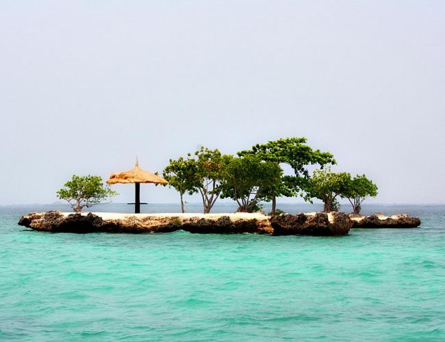 Xvlor Olango Island