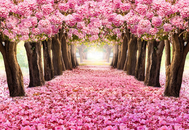 Pink Flowers Forest Wedding Backdrop