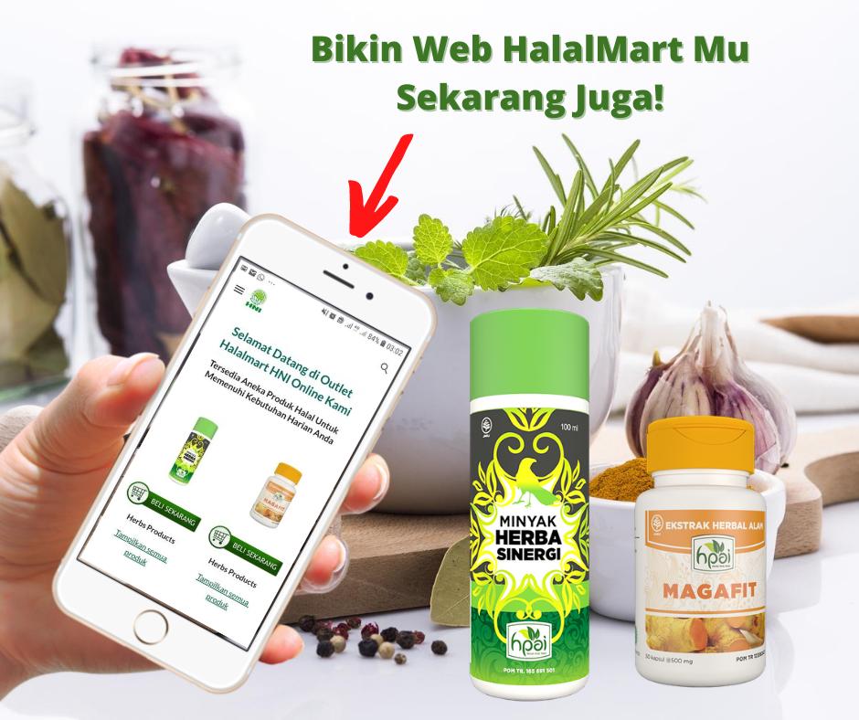 Kumpulan Gambar Promosi Pembuatan Web HNI Halal Mart