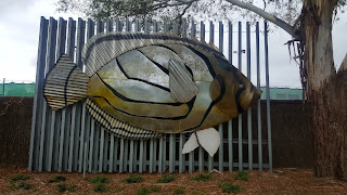72 BIG Fish from the 2006 Commonwealth Games   BIG Meyer's Butterfly Fish