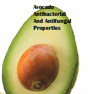 Amazing health benefits of Avocado Butter Fruit Makhanphal - Avocado Antibacterial And Antifungal Properties