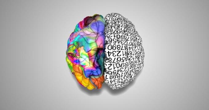 Psikoloji Nedir? Psikoloji Hakkında Bilinmesi Gereken Bilgiler