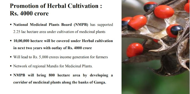 Fund-for-Herbal-Cultivation