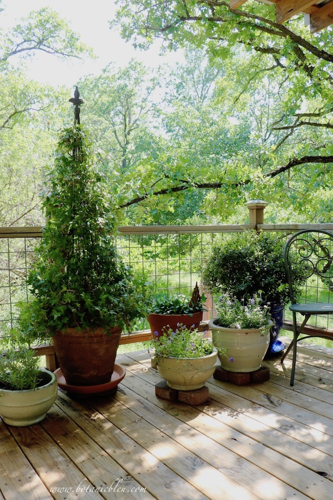 Prune, shape, and fertilize plants to get your deck and porch ready for summer
