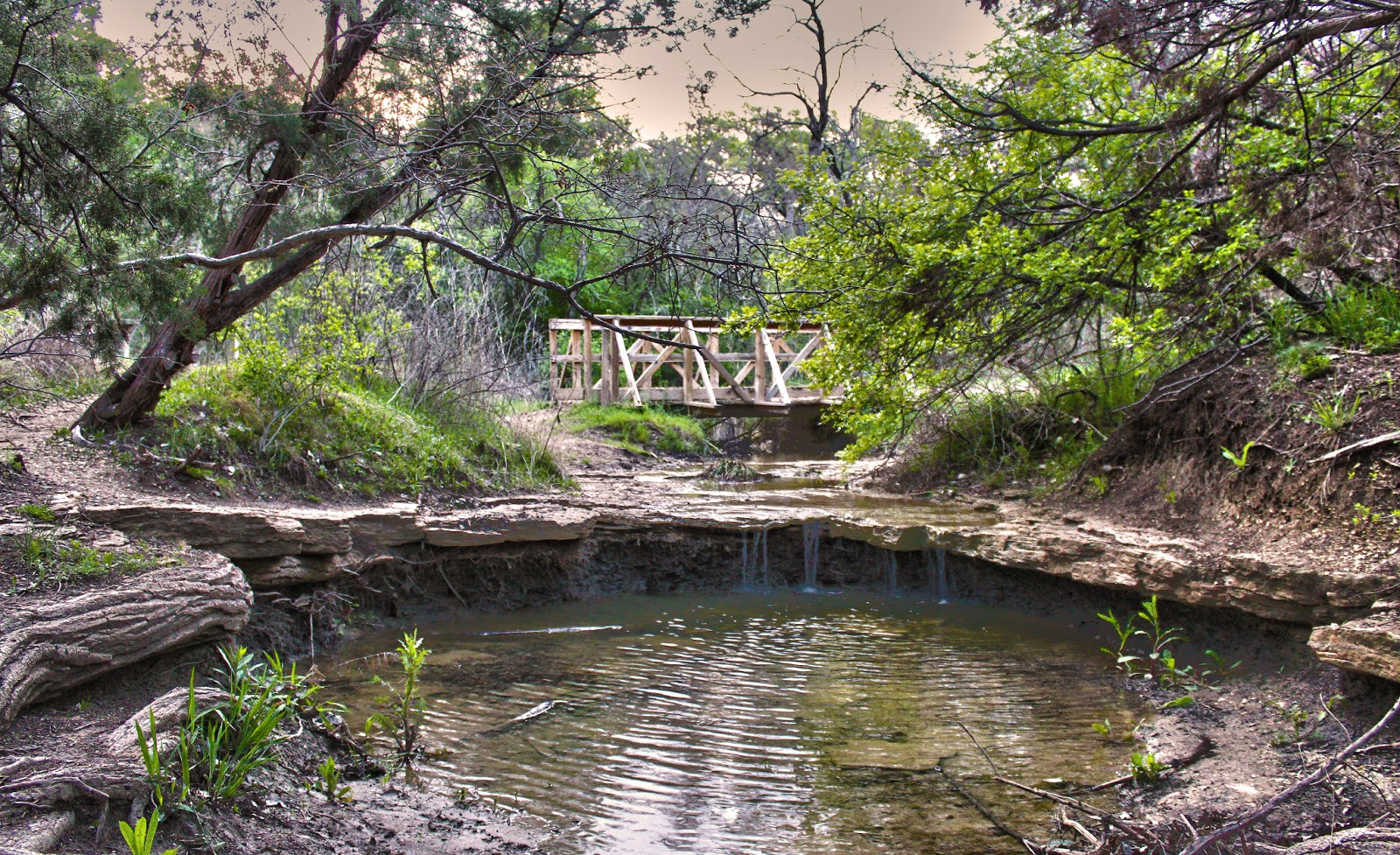 Rock Springs Nature Center