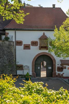 Premiumwanderweg Murgleiter | Etappe 2 von Gernsbach nach Forbach | Wandern nördlicher Schwarzwald 06