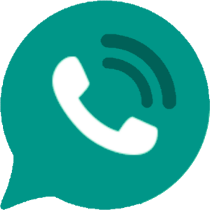 WhatsApp B58 v9.1 Final Edition