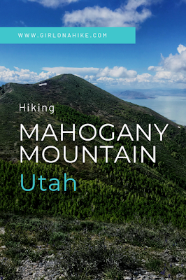 Hiking Mahogany Mountain, Utah county, utah peak baggers, hiking in utah with dogs, Utah's best peaks