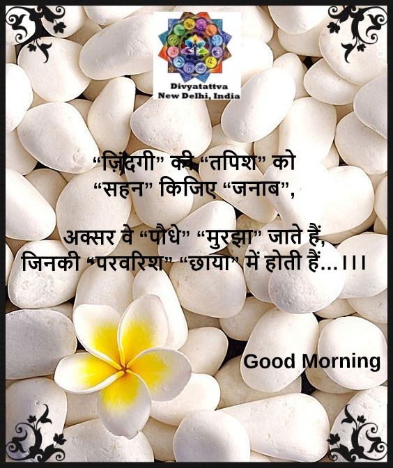 beautiful good morning quotes, success good morning quotes, good morning quotes, indian good morning quotes for love