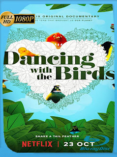 Dancing with the Birds (2019) HD [1080p] Latino [Google Drive] Panchirulo