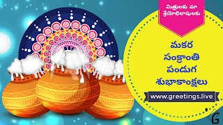 Over flowing pongal pots Sankranti festival Wishes in Telugu