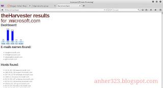theHarvester result