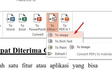 Convert PDF ke JPG Menggunakan Nitro PDF