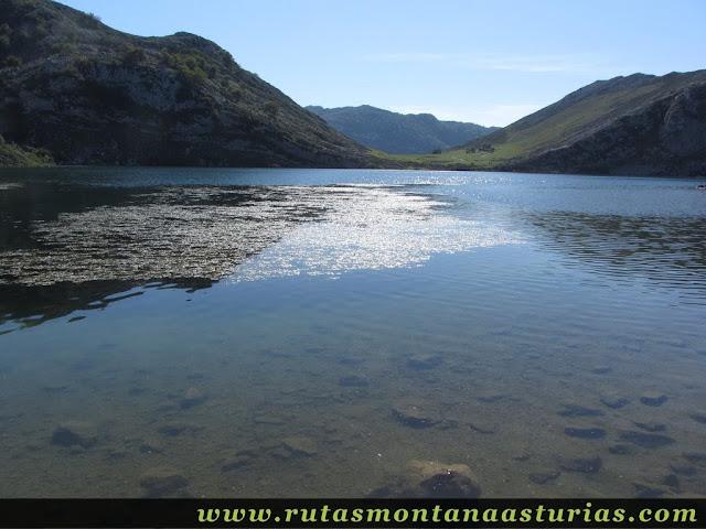 Ruta Lagos de Covadonga PR PNPE-2: Lago Enol