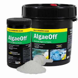 algaeoff string algae