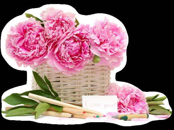 Gifs De Flores Com Fundos Transparentes Flores Png Flowers Gifs