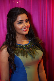 Anupama Parameswaran in lovely shaded gown ~  Exclusive 21.JPG
